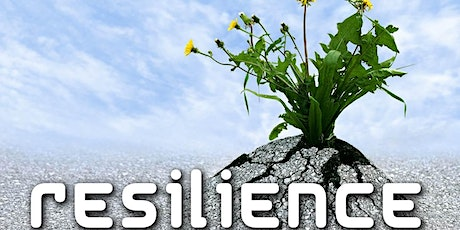 Building Resilience in Business tickets