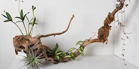 Botanical Sculpture Workshop tickets