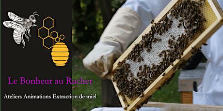 Apiculture Abeille Rucher Biodiversité - Extraction et dégustation du miel billets