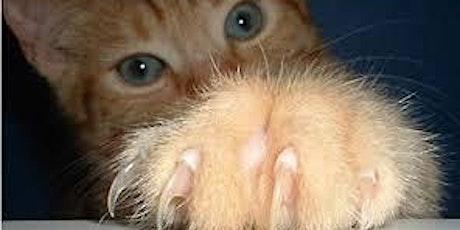 Feline Rescue Cat Claw  Clipping Clinic - Wayzata tickets