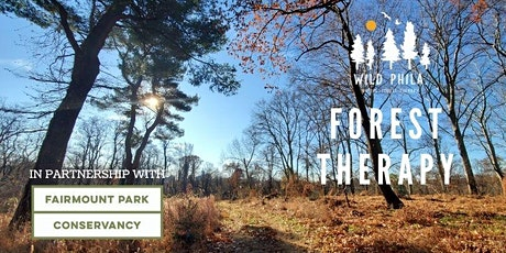 Forest Therapy at Boxers' Trail tickets