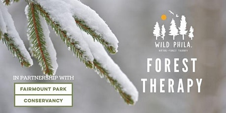 Forest Therapy at The Trolley Trail tickets