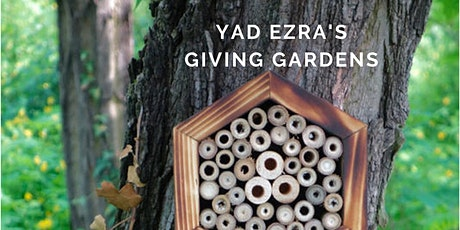 How to Make a Native Bee Hotel! tickets