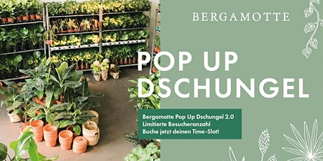 Bergamotte Pop Up Dschungel 2.0 // Berlin Tickets