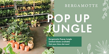 Bergamotte Pop Up Jungle // Oslo tickets
