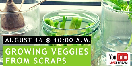 Food from Scraps | Virtual Family Food Lab tickets