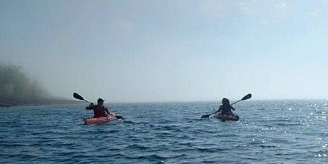 Guided Sea Kayak Tour (Morning) tickets