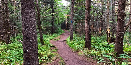 Guided Hike at Leveaux Mountain tickets