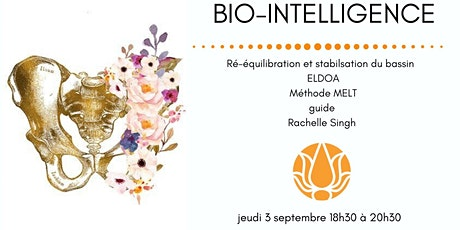 BIO-INTELLIGENCE DU BASSIN billets