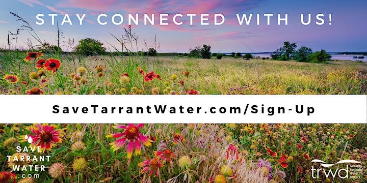 Tough Texas Turf: 3-Part Series image