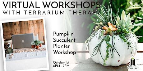 Virtual Workshop - Pumpkin Succulent Planter tickets