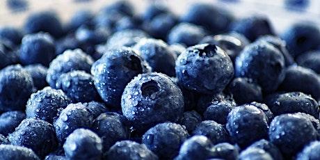 Nutritional Consultant, Dana Dragone: Detoxification diets tickets