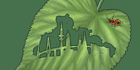 WE429 Wasser, Wald und Wiesen - der Harburger Stadtpark Tickets