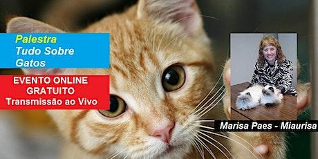 Palestra Online Gratuita Tudo Sobre Gatos – Miaurisa ingressos