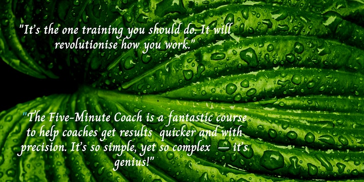 The Five-Minute Coach Training image