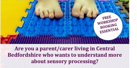 Online  Workshop An Introduction to Sensory Processing Session 1 tickets