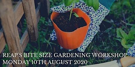 REAP's Bite Size Gardening Workshop - Monday 10th August 2020 tickets