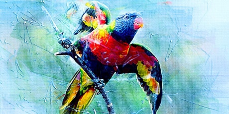 Painting Watercolour Native Birds tickets