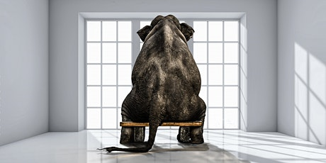 'The Elephant in the Room' - Protecting you and your loved ones tickets