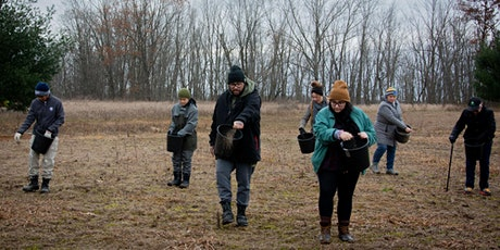 Black Friday Prairie Planting at Saul Lake Bog Nature Preserve tickets