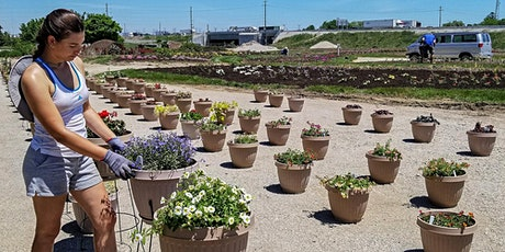 Trial Garden Open House 2020 tickets