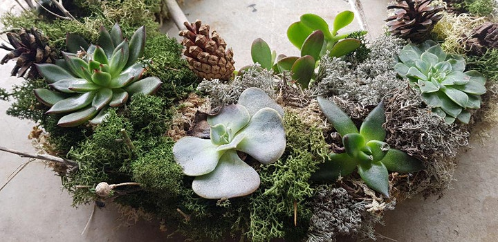 Living wreath making with succulents image