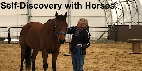 Self-Discovery with Horses tickets