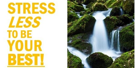 STRESS LESS TO BE YOUR BEST!	Lunch and Learn - Virtual Workshop tickets
