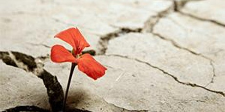 Essential Building Blocks for Creating Post-Traumatic Growth in Survivors tickets