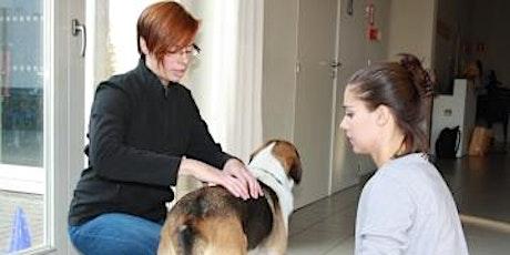 Hondenmassage: Samen ontspannen kan je leren tickets