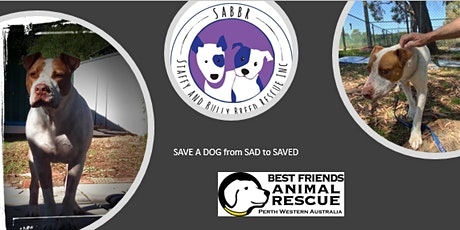 """SAVE A DOG"" from SAD to ""SAVED"" tickets"