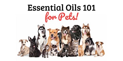 Essential Oils 101 for Pets (Free Webinar)