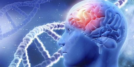 Treinamento em Saúde Neurofuncional da Criança 4h bilhetes