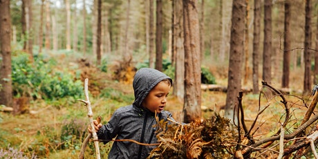 Wild Play 18 August - Amazing Trees at Ecclesall Woods billets