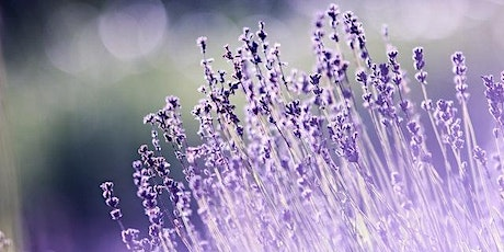 Introduction into the Power of Essential Oils tickets