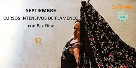 Curso intensivo de flamenco con Paz Diaz entradas