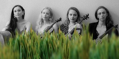 Strings & Grass tickets