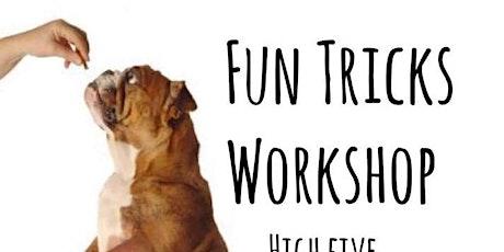 Fun Tricks Workshop @ DSPCA, Rathfarnham tickets