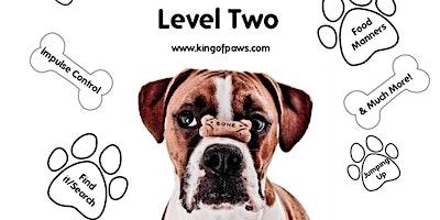 Level Two Training, Marlay Park, Sunday