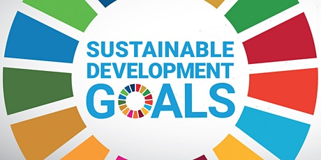 Auditing Progress Toward the United Nations' Sustainable Development Goals tickets