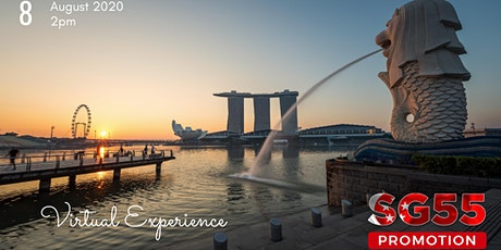 Singapore Virtual Tour tickets
