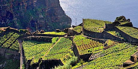 The Wine Diva: Wines of Portugal tickets