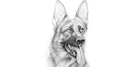 60min  Animal Sketching - German Shepard Dog @10AM (Ages 6+) tickets