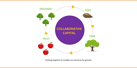 Collaborative Strategies to Raise Seed Capital and Working Capital tickets