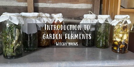 Introduction to Garden Ferments - The Witchy Brews with Michael Wardle tickets