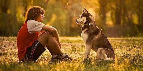 Webinar: Masterclass Taal van de hond - gevorderd tickets