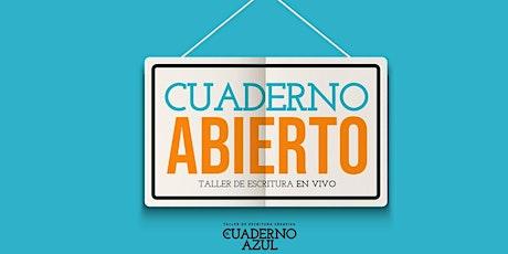 Cuaderno Abierto, taller intensivo de escritura, con Juan Sklar. entradas