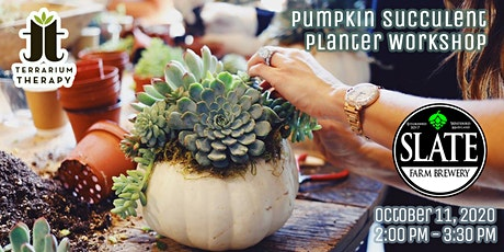SOLD OUT - Pumpkin Succulent Workshop at Slate Farm Brewery tickets