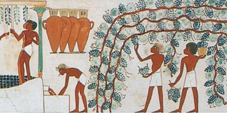 """Wine Class """"Rediscover Ancient Grapes""""  with Svetlana Yanushkevich, DWS tickets"""