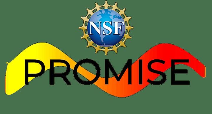 PROMISE Summer Success Institute (SSI) 2021 #SSI2021 image